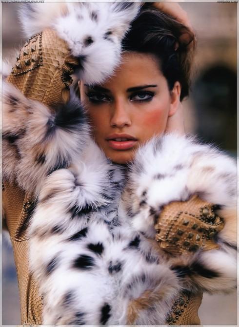 Là thiên thần trụ lâu nhất trên sân khấu  Victoria's Secret (từ năm 2000), Lima đứng ở vị trí thứ 3 trong danh sách người mẫu kiếm được nhiều tiền nhất năm 2013 với 6 tỷ đô la. Không đáng ngạc nhiên cho lắm khi phần lớn thu nhập của cô đến từ hợp đồng với  những nhãn hiệu đồ lót thời trang.