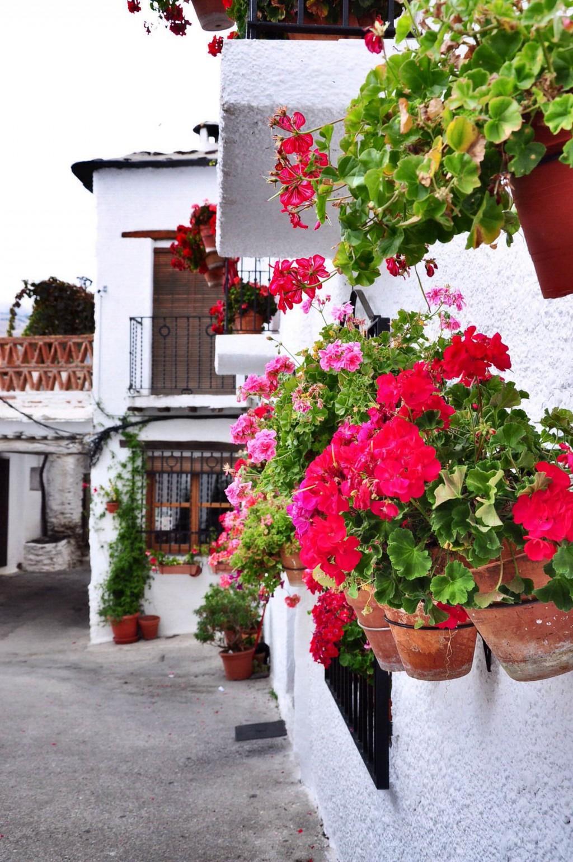 …Nếu không có chỗ dưới đất thì xếp chen chúc trên ban công như một căn nhà nhỏ ở làng Quéntar (Tây Ban Nha)