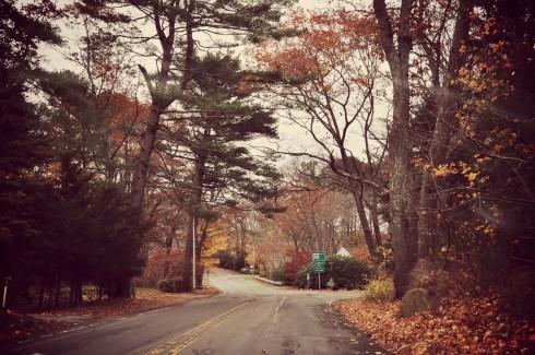Lái xe lang thang là cách phổ biến nhất để ngắm lá đổi màu trên khắp các cung đường. Nên mùa thu cũng là mùa road trip (những chuyến đi bằng đường bộ) ở vùng New England.
