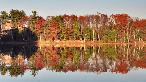 Mùa thu là thời điểm tuyệt vời để thực hiện những chuyến đi bộ dài trong rừng, nơi bạn có thể đắm mình giữa thiên nhiên rực rỡ và mộng mơ, như bức ảnh chụp ở Nashua - New Hampshire này.