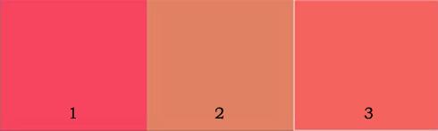 7 bước đánh má hồng hoàn hảo ELLE VN