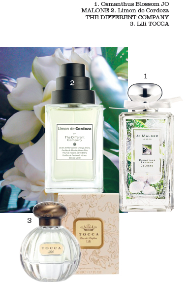 Tocca Liliana Eau de Parfum, Jo Malone Osmanthus Blossom