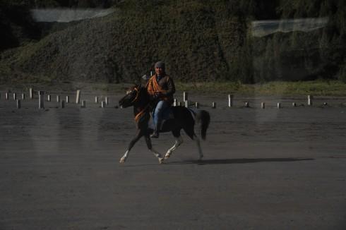 Ngựa là phương tiện giao thông chính của người Hindu giáo ở làng Tengger