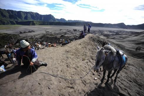 Phút nghỉ chân của người và ngựa ở lưng chừng núi Bromo