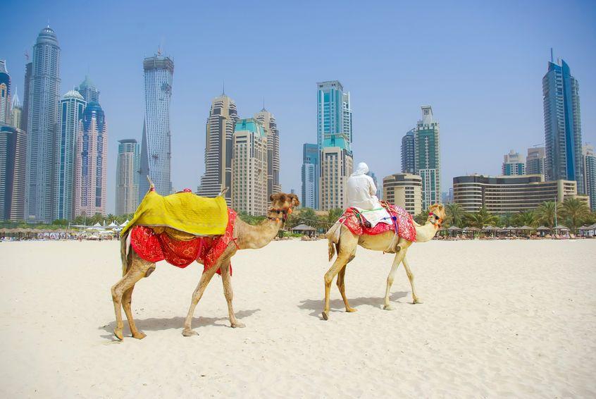 5 lý do nên đi du lịch Dubai