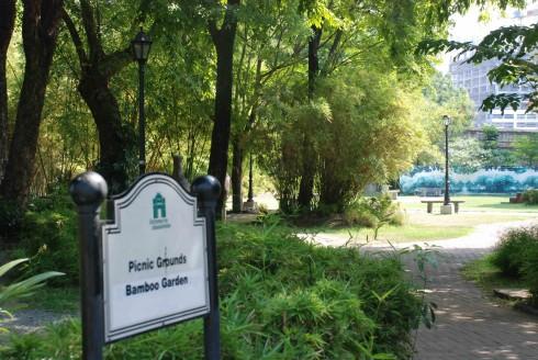 Khu vườn tre nơi dành cho du khách nghỉ ngơi và thưởng nắng, gió trời.