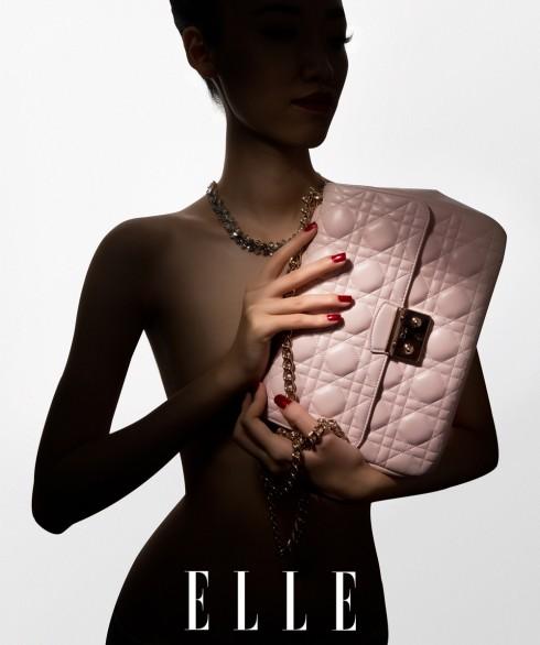 Túi đeo vai Miss Dior, Vòng cổ Dior