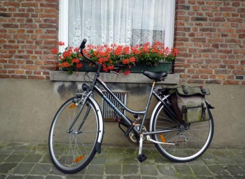 Một cảnh thường thấy ở Bruges