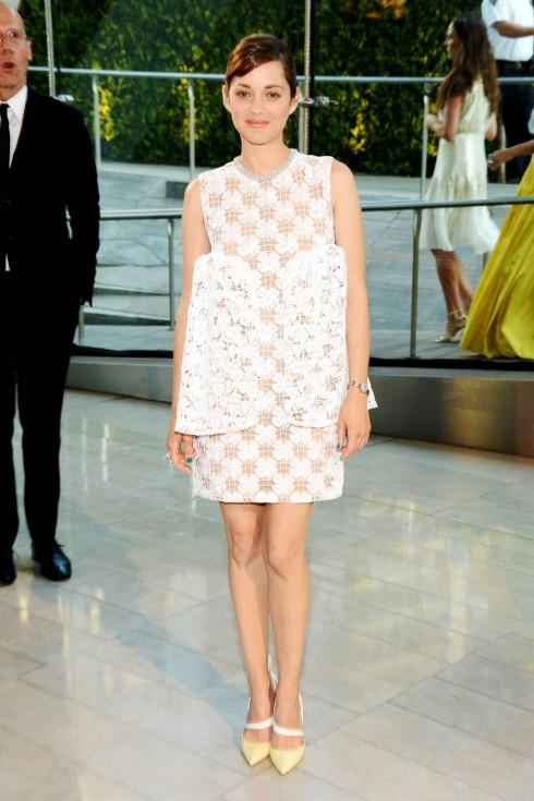 Marion Cotillard trong thiết kế Dior