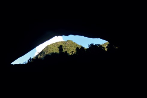 Cấu tạo địa mạo, địa chất và thảm thực vật độc đáo càng tăng thêm vẻ đẹp cho chuyến thám hiểm hang động