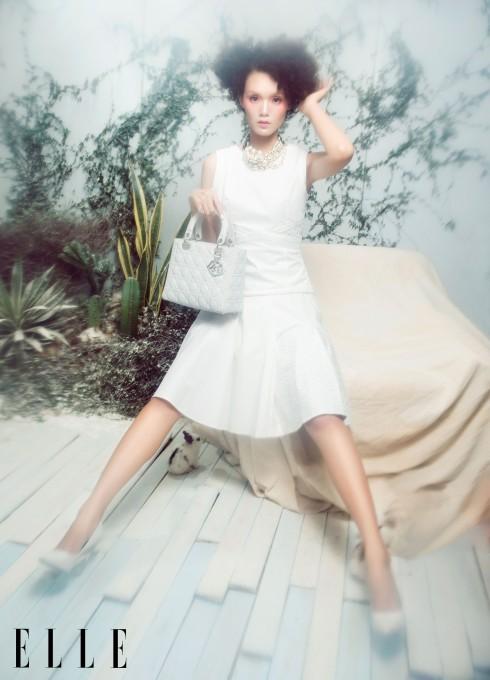 Trang phục, túi xách, vòng cổ Dior
