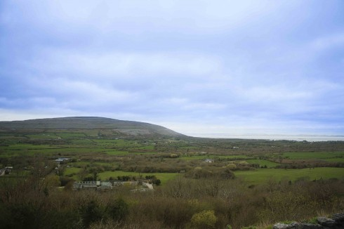 Những thảm cỏ xanh trên đường đến Cliffs of Moher