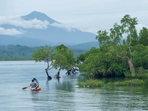 Dự án GoodPlanet của Bertrand với sự đồng hành của hãng Omega và những người dân địa phương đang bước đầu tạo nên sự hiểu biết về tầm quan trọng của rừng đước và hệ sinh thái biển ở Bahoi