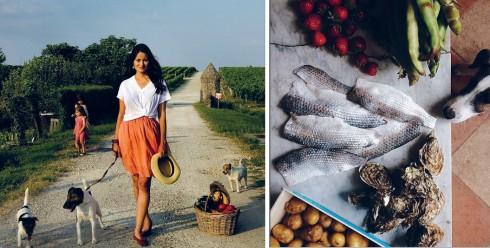 Mimi chia sẻ hình ảnh về cuộc sống thảnh thơi đầy hạnh phúc của gia đình tại khu đồn điền thơ mộng ở miền Nam nước Pháp.