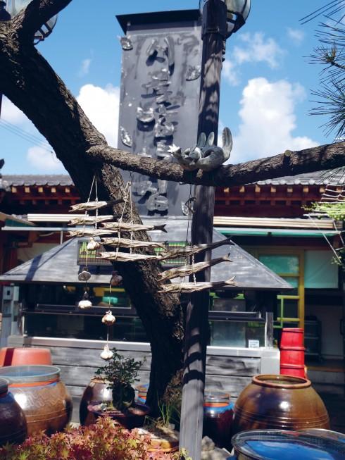 Cá khô được biến thành vật trang trí cho một nhà hàng món Hàn Quốc