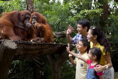 ellevn Singapore Zoo