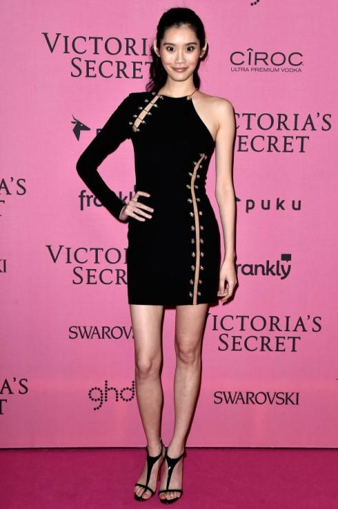 Siêu mẫu gốc Á Ming Xi và váy Versus Versace