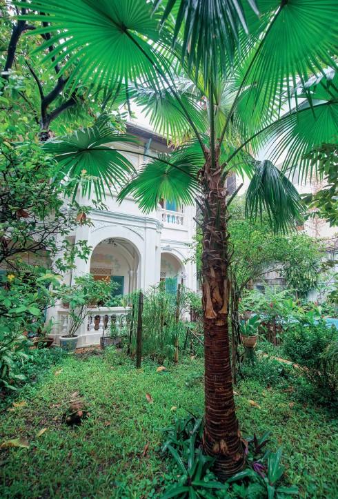 Một góc khu vườn