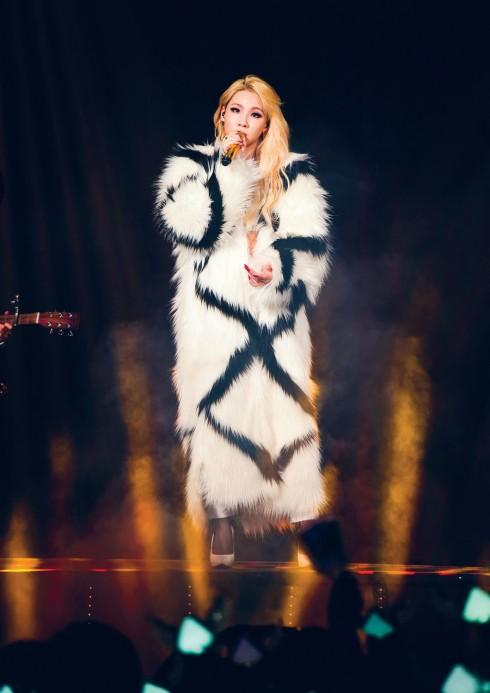 Phong cách trên sân khấu của Lee Chae-Rin thường được miêu tả là nóng bỏng và đầy kích động.