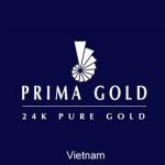 logo prima gold