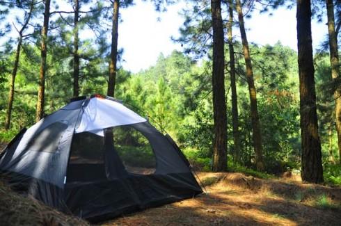 Căng lều trong buổi dã ngoại Núi Hàm Lợn