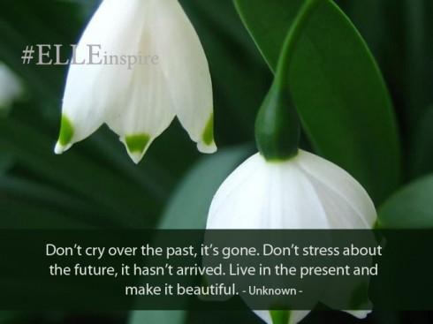 """""""Đừng khóc tiếc nuối cho những gì đã xảy ra trong quá khứ. Đừng căng thẳng cho những việc chưa xảy ra trong tương lai. Hãy sống trọn vẹn ở thời điểm hiện tại và làm nó thật tươi đẹp."""" - Khuyết danh."""