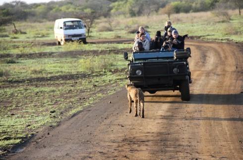 Các tình nguyện viên trên truck-loại xe chuyên dụng