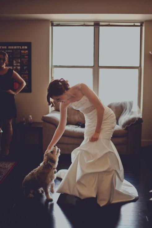 Người ta có thể nhìn thấy những người bạn nhỏ vui mừng quấn quýt, buồn vu vơ hay hờn dỗi cô dâu ngày đi lấy chồng.