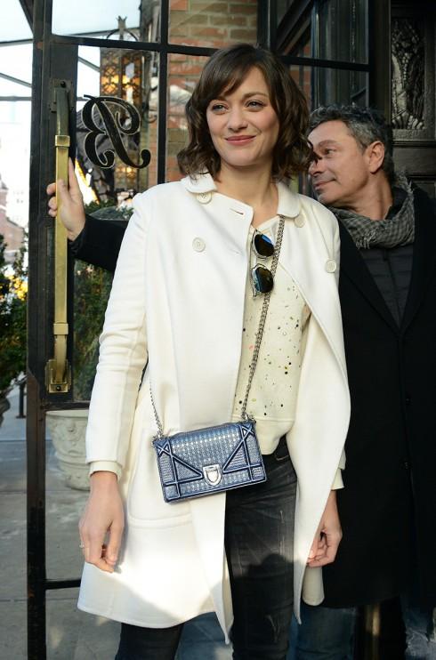Marion Cottilard và chiếc túi Diorama màu xám
