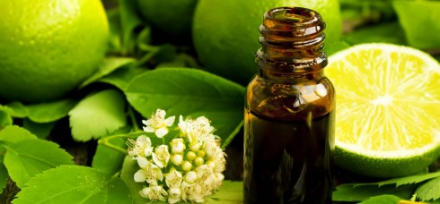 lime-oil