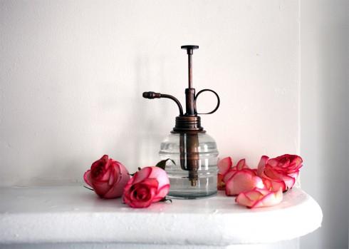 Rose Hydrosol bạn có thể tìm mua hoặc tự làm