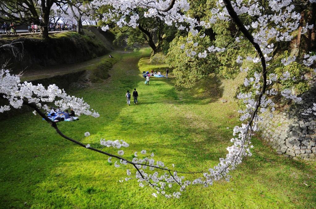 Vườn Nhật là một kiểu vườn cảnh truyền thống của văn hóa đất nước mặt trời mọc.