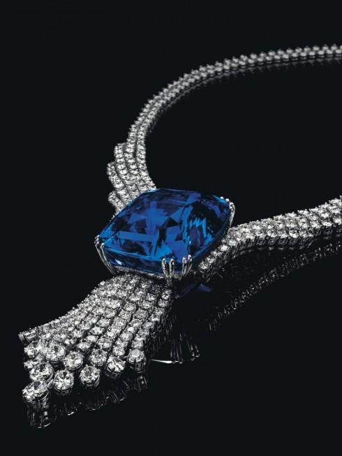 Dang cap cua The Blue Belle of Asia