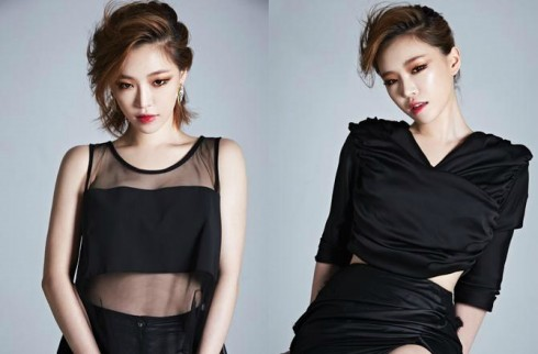 Ca sĩ Son Gain của Brown Eyed Girls
