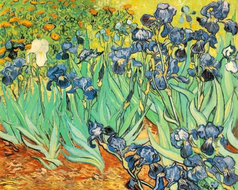 Irises - Một bức hội họa của Vincent Van Gogh