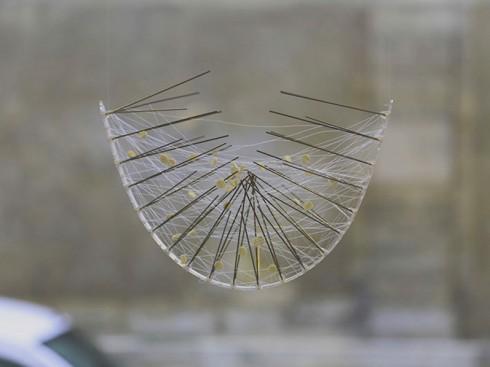 Tên tác phẩm: Spider Web.