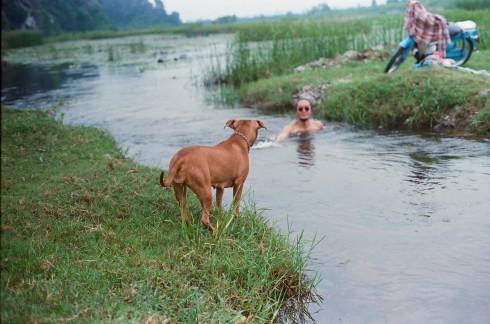 Đầm Vân Long là bể bơi tự nhiên mà chú chó Yoko lần đầu tiên biết bơi.
