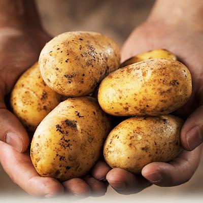 Kết quả hình ảnh cho mặt nạ khoai tây