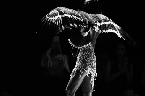 Người mẫu Minh Triệu và chú chim Đại Bàng