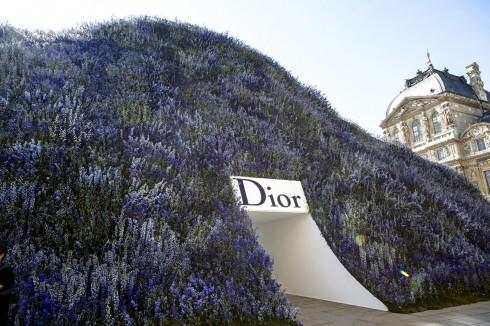 Một đồi hoa phi yến xanh đầy mộng mơ – ngự trị giữa khoảng sân của Carré du Louvre.