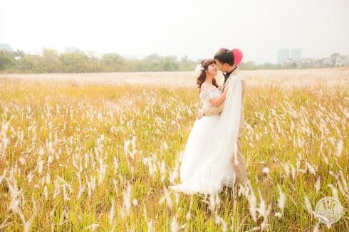 Cánh đồng cỏ lau lãng mạn ở khu đô thị Phú Mỹ Hưng