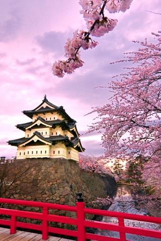 Kinh nghiệm xin visa khi du lịch Nhật Bản