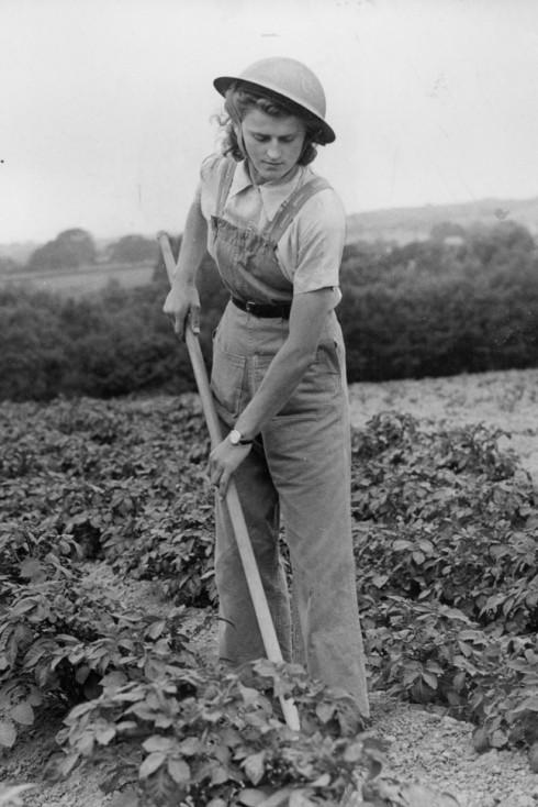 Cô gái nông dân ở miền Nam nước Anh, 1944.