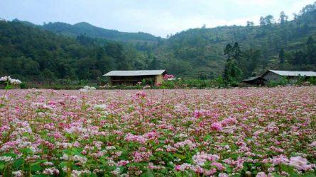 10 địa điểm du lịch đẹp nhất mùa Thu-Đông Việt Nam
