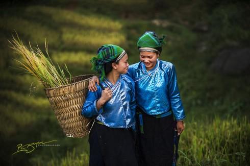 Nung Ladies at Harvest Time (Thiếu nữ người Nùng trong mùa thu hoạch)
