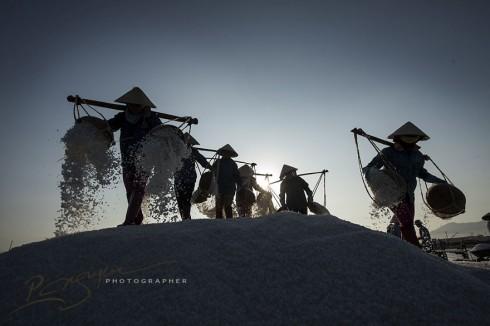 The Salt Harvesters of Khanh Hoa Province (Thu hoạch muối ở Khánh Hòa)