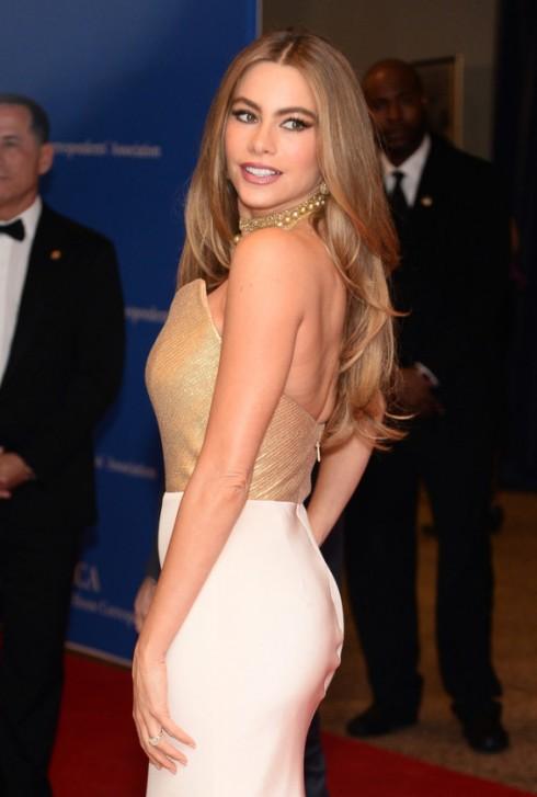 Sofia Vergara trong một bữa tiệc ở Nhà Trắng. Tại nơi đây, Joe Manganilloe thừa nhận đã bị cuốn hút bởi vẻ ngoài quyến rũ của cô
