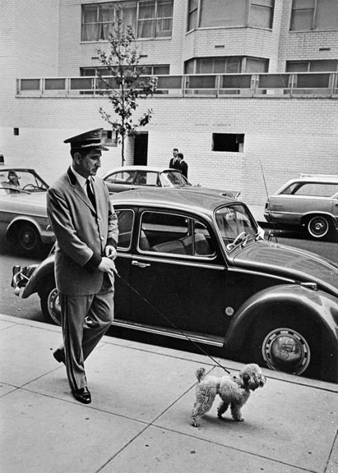 Doorman Ralph Savastani Walking Poodle On The Upper East Side - Nhiếp ảnh gia Garry Winogrand (NYC, 1966)