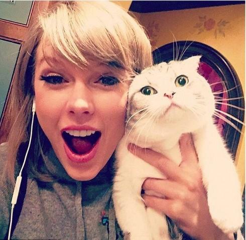"""Và tất nhiên trên Instagram của nữ ca sĩ Taylor Swift không thể thiếu hình ảnh chú mèo cưng của mình, Meredith. Bức ảnh đáng yêu này đã thu hút về 2.4 triệu lượt like nhờ vào biểu cảm đối lập của cô chủ Taylor và chú mèo xinh, khiến nữ ca sĩ đã chú thích bức ảnh rằng: """"Meredith bị dị ứng với niềm vui đấy."""""""