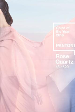 Viện màu sắc Pantone công bố